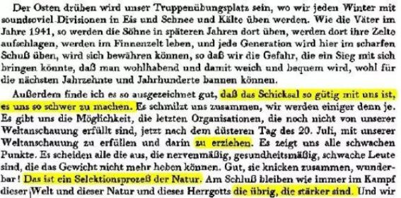 Himmler Rede Sozialisationsthese