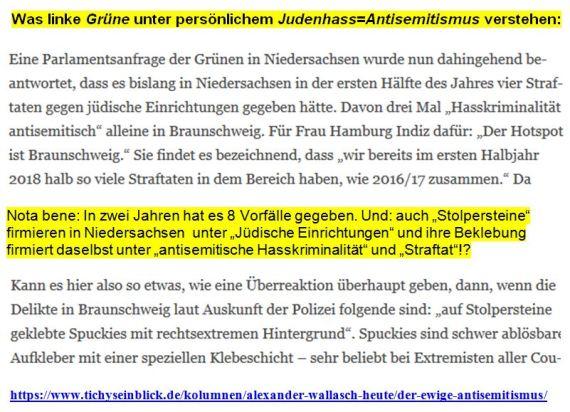 persönlicher Judenhass Niedersachsen Grüne