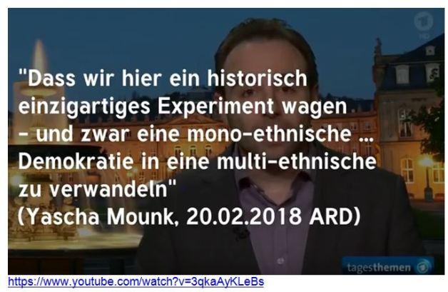 Yascha Mounk multiethnische Demokratie